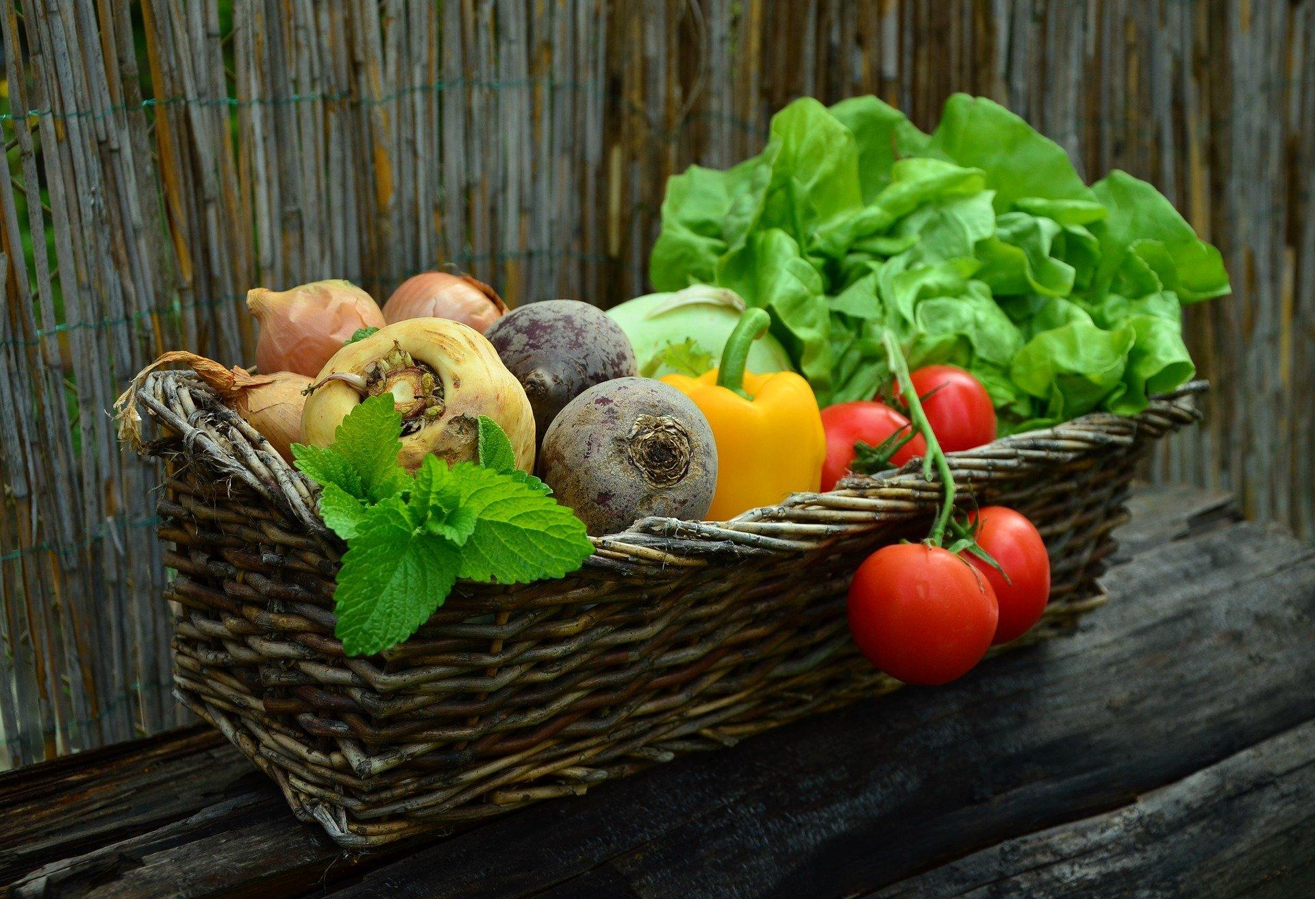 Jezte zdravě a pestře