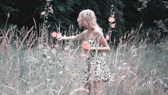 sbírání květů