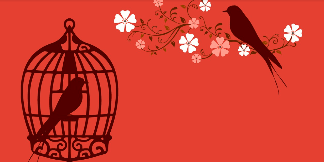 klícka pták
